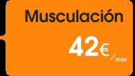 La actividad física encaminada al mntenimiento muscular (de la musculatura visible) del ser humano. Desde este punto de vista, comparte con otros deportes ciertos métodos y destrezas, aunque su finalidad...